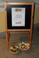 50 Jahre Union Prambachkirchen Festakt